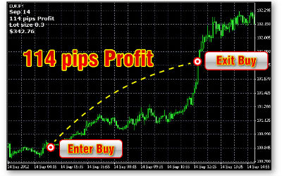 Forex education pip