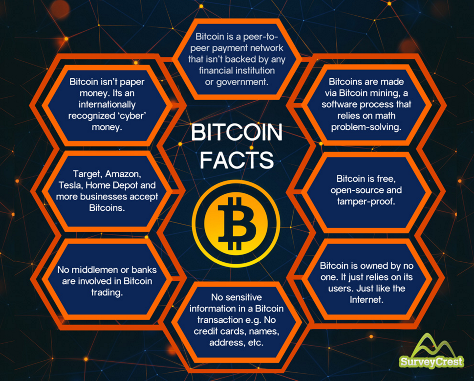 Bitcoin Facts infographic by SurveyCrest