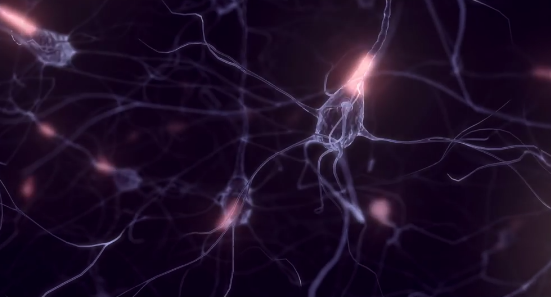 Blockchain and brain cells - neuro disruption of an industry