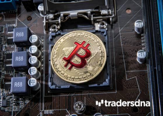 Uphold, Tesla, Bitcoin, Bitcoin Zero, Bitcoin Carbon