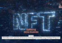 NFT, NFTs, Book, Dinis Guarda