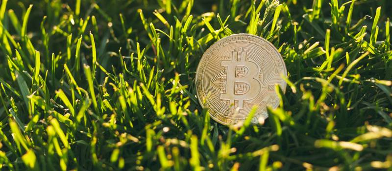 digital_asset_insights_30_06